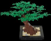 Special_Projects_Bonzai_Tree